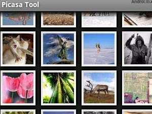 Picasa for Android